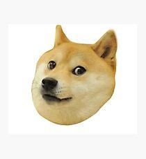 Doge Very Wow Much Dog Such Shiba Shibe Inu Photographic Print