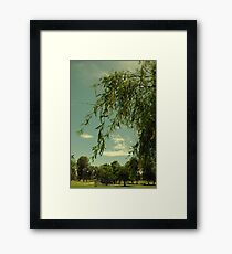 Vintage Trees Framed Print