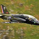 Hawk T1- D Special Tail by Simon Pattinson