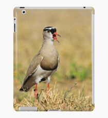 Plover Talk - Funny Nature and Entertaining Wildlife iPad Case/Skin