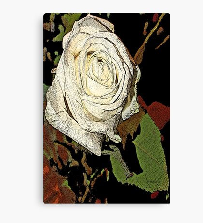 white roses of romance  Canvas Print