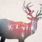 Deer & Bird by kishART