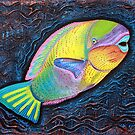 Parrotfish  by Laura Barbosa
