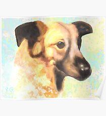 Water Color Dog Portrait  Poster