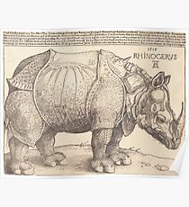 Albrecht Dürer or Durer The Rhinoceros Poster