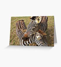 zebra sisters Greeting Card
