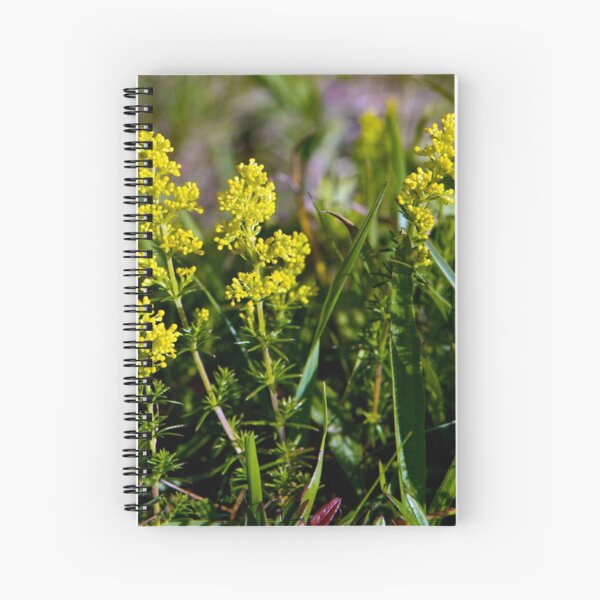 Galium Verum (Lady's Bedstraw), Inishmore, Aran Islands Spiral Notebook