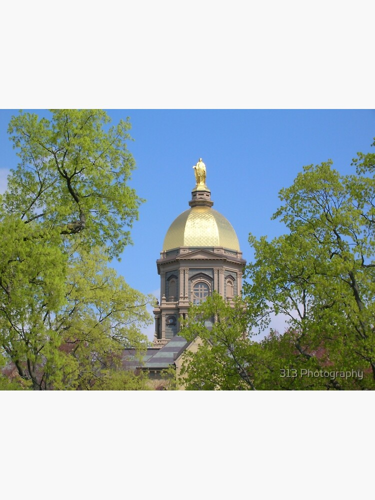 Golden Dome Through the Trees-Notre Dame by ber752001