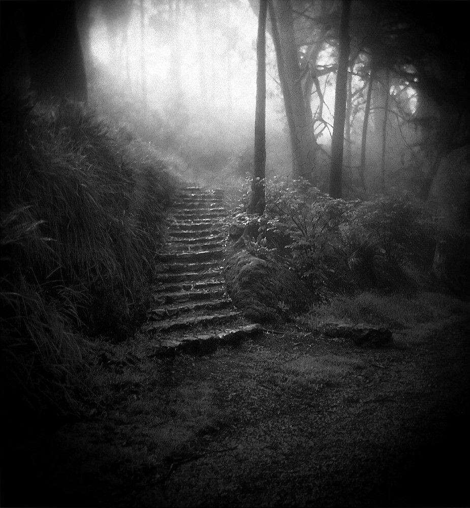 Mountain Steps B&W (Holga) by Richard Mason