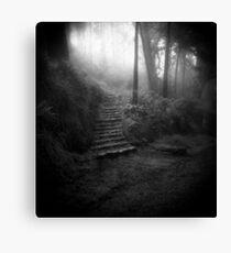 Mountain Steps B&W (Holga) Canvas Print