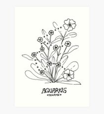 Floral Constellation - Aquarius Art Print