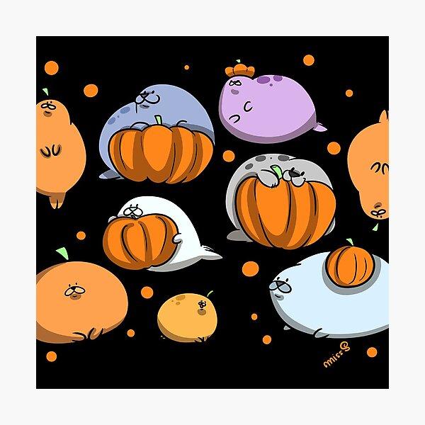 Spooky Season Seals Photographic Print