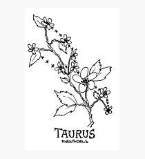 Floral Constellation - Taurus Photographic Print