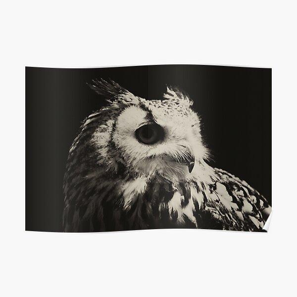 Wild gothic owl Poster