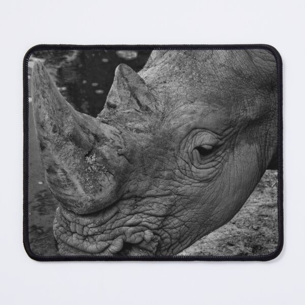 Close up of an endangered white rhinoceros Mouse Pad