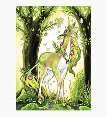 Unicorn - Heart of the Forest Photographic Print