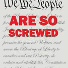 We the People are so screwed by welikestuff