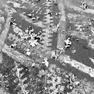tire trackz by evon ski