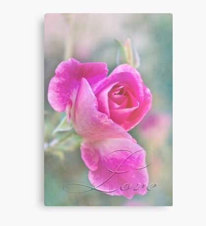 Romantic rose in a mist with love Canvas Print
