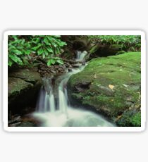 Woodfin Cascades Sticker