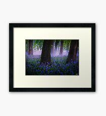Am I dreaming? Framed Print