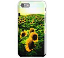 The Sunflower iPhone Case/Skin