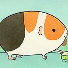 Tri-Color Guinea-pig with a Slice of Cucumber by zoel