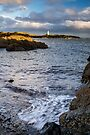 Elie Lighthouse by Cliff Williams