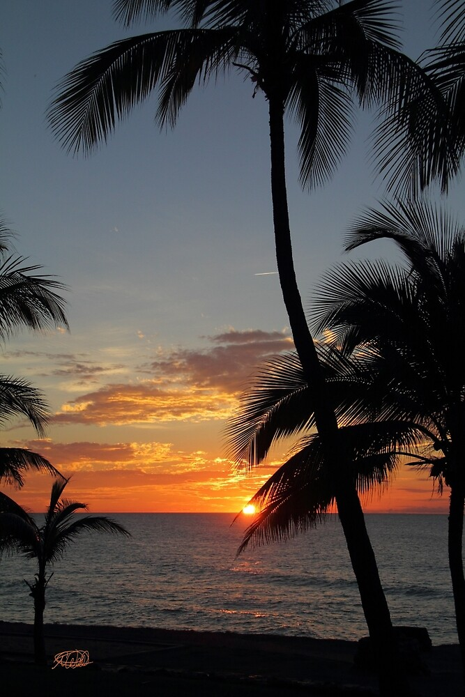 Tropical Sunset by Todd Weeks