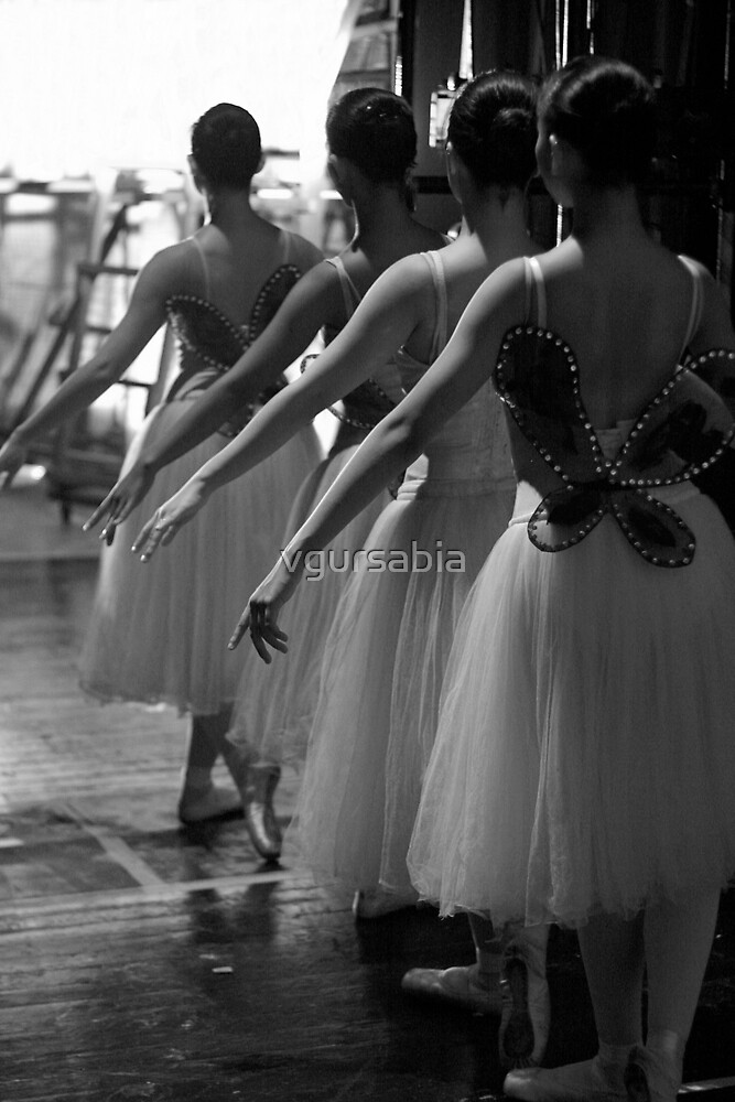 ballerinas by vgursabia
