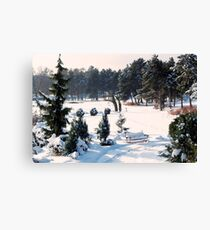 Snow Bench for Us Canvas Print