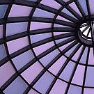 Skylight to the Future by Lynne Prestebak