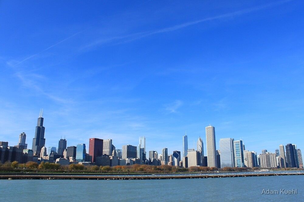 The Chicago Skyline by Adam Kuehl