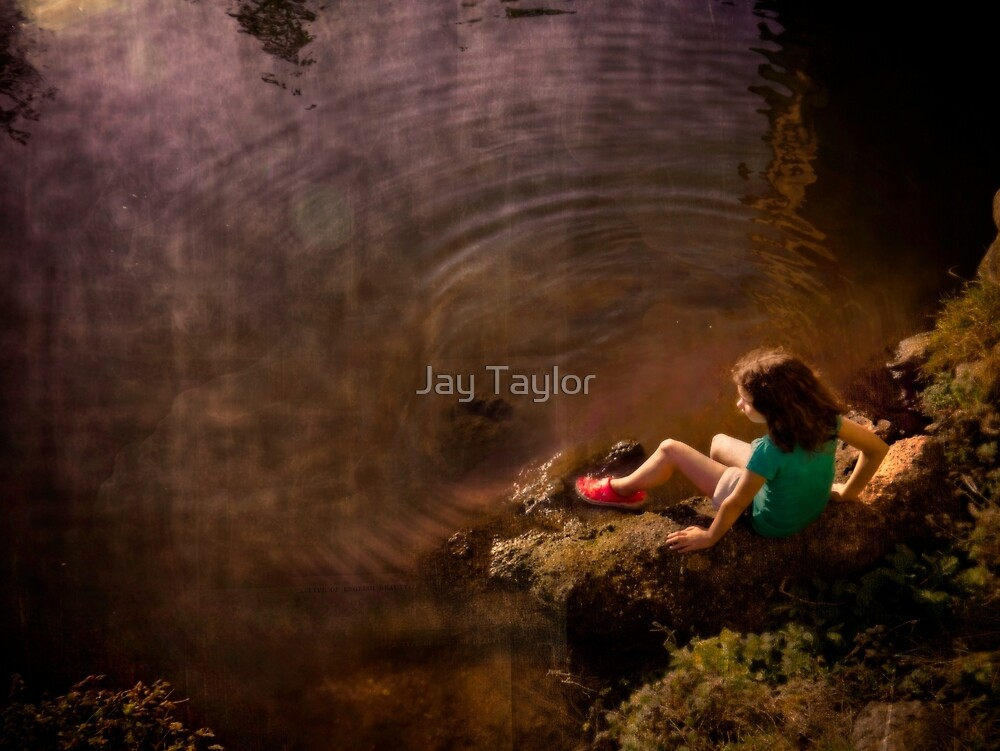 Enjoy It While It Lasts by Jay Taylor