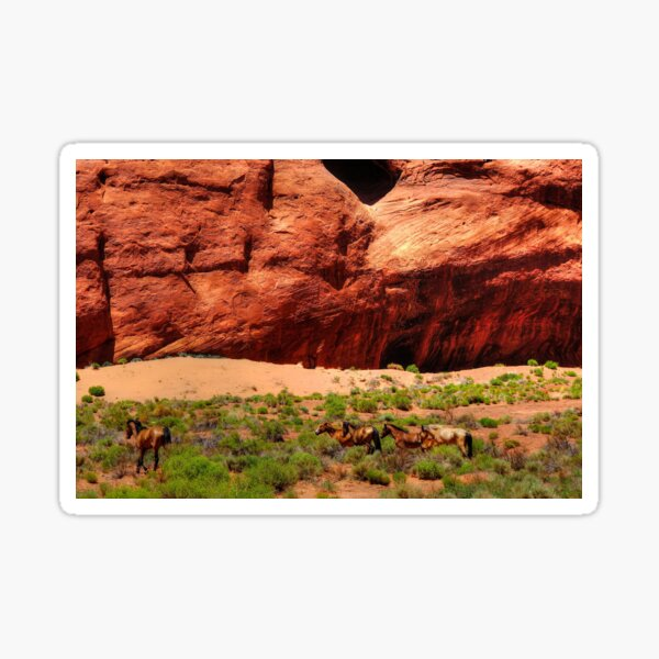 Wild mustangs In the Canyon Sticker