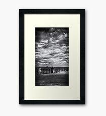 Bait Framed Print