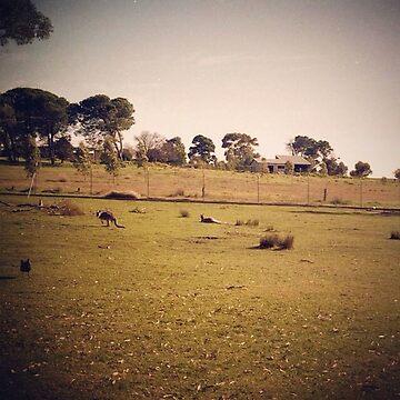 Kangaroo Flats by jembystarlight
