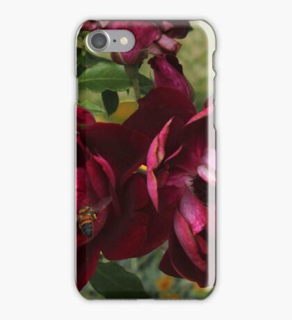 Red Red Roses iPhone Case/Skin