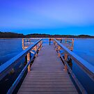 Boardwalk to a frozen horizon by Owed To Nature