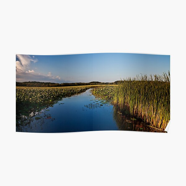 August flows through Great Meadows Poster