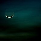 Very young crescent moon by Owed To Nature