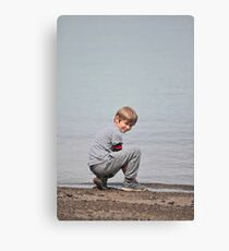 jules water background Canvas Print