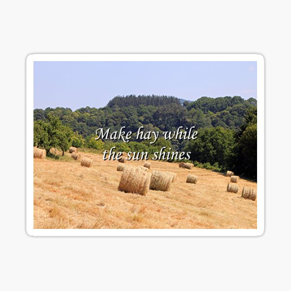Make hay while the sun shines hay bales, Spain Sticker