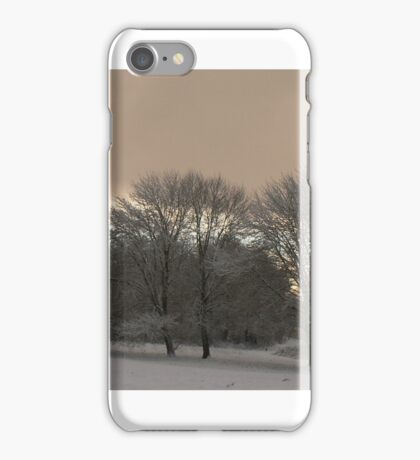 snowing day2 iPhone Case/Skin