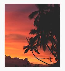 Coconut Trees Silhouette at Dusk Photographic Print