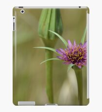 Dandelion in bloom iPad Case/Skin