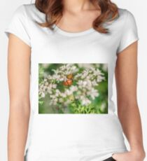 Lady Bugs on White Flowers Women's Fitted Scoop T-Shirt