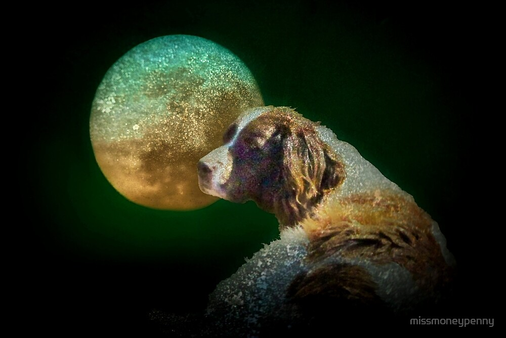 Too tired to howl at the moon by missmoneypenny