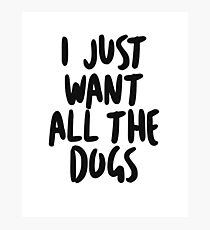 I just want all the dogs Photographic Print