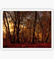 Woods Sticker
